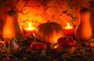 Fall Gourds Image Only Web 500X334