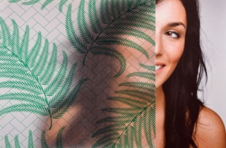 Sxw 019 Gf Green Frosted Fern 500X333